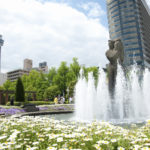 神奈川県横浜市の写真